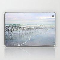 seabirds Laptop & iPad Skin