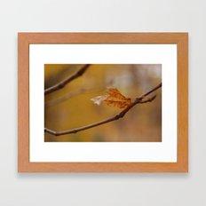 Leaves of Change 2 Framed Art Print