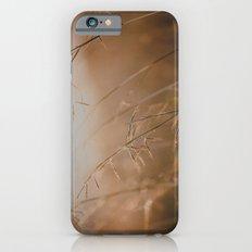 Golden Sun iPhone 6 Slim Case
