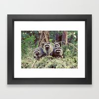 raccoon family Framed Art Print