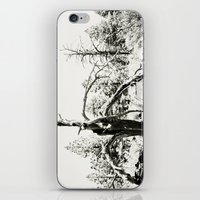 Volcanic Aftermath iPhone & iPod Skin