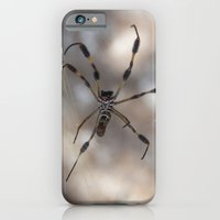 iPhone & iPod Case featuring Spider 1 | Picture A by Matthew Allan Carr