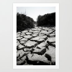 Mud Cracks Art Print