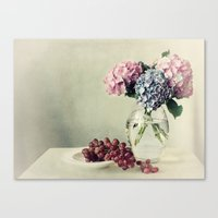 Still life with hydrangea Canvas Print