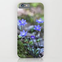 Anemone in forest iPhone 6 Slim Case