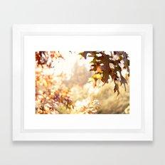 hazy autumn Framed Art Print
