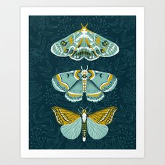Lepidoptery No. 8 By And… Art Print