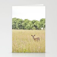 Little Dear Stationery Cards