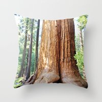 Trail of 100 Giants Throw Pillow