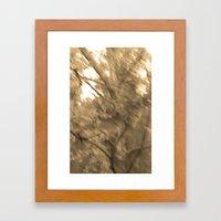 Treeage I - Sepia Framed Art Print