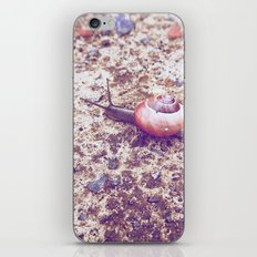 Escargot iPhone & iPod Skin