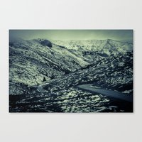 partial snow Canvas Print