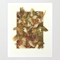 bird Art Prints featuring Red-Throated, Black-capped, Spotted, Barred by Teagan White