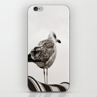 I'm waiting for you iPhone & iPod Skin