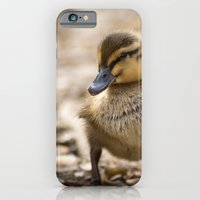 iPhone & iPod Case featuring New kids on the block by Simon's Photography