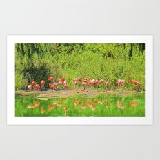 Pretty Flamingos Art Print