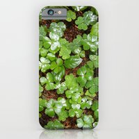 iPhone & iPod Case featuring Green by Flysmile