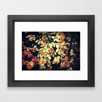 Autumnally  Framed Art Print