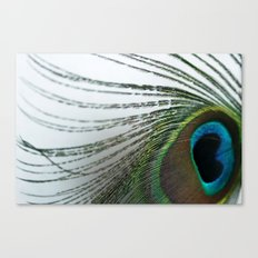 Solid Fluid Canvas Print