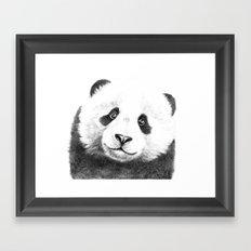 Giant  Panda G100 Framed Art Print