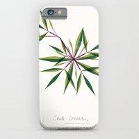 Crab Grass Modern Botanical iPhone 6 Slim Case