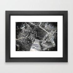 A Walk Through The Crook… Framed Art Print