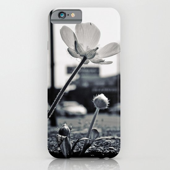 Roadside beauty iPhone & iPod Case