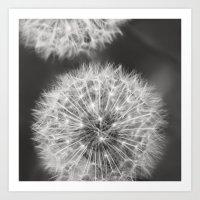 Dandelion Wishes Art Print