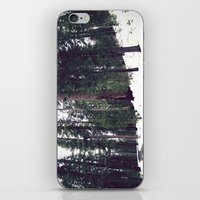 Sequoia Forest iPhone & iPod Skin