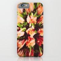 Roses II iPhone 6 Slim Case