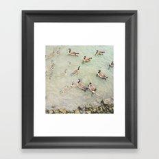Geese Geese Duck Framed Art Print