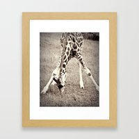 African Beauty Framed Art Print