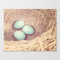 Robin's Nest Canvas Print
