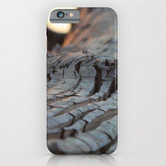 albero sapiente iPhone & iPod Case