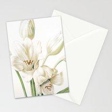 VI. Vintage Flowers Botanical Print by Pierre-Joseph Redouté - Crinum Jagus Stationery Cards