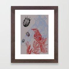 Beetles and Bird Framed Art Print