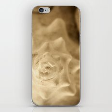 Seaside Secrets iPhone & iPod Skin