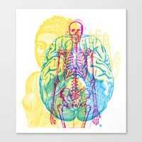 Brain Skeleton Canvas Print