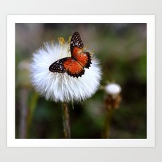 Dandelion and butterfly Art Print