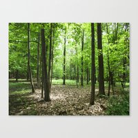 Woodland Secrets - Spring Greens Canvas Print