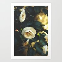 Beautiful Life Art Print