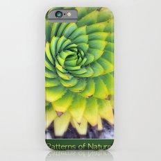 Patterns of Nature - succulent I iPhone 6 Slim Case