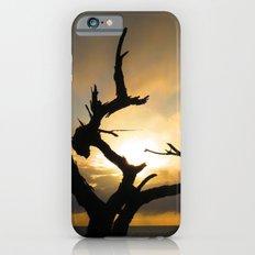 Stark iPhone 6 Slim Case