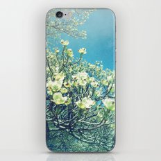 She Kept Her Dreams and Standards High iPhone & iPod Skin