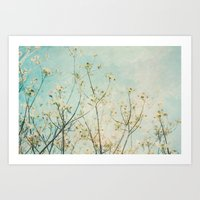 White Dogwood Tree Sprin… Art Print