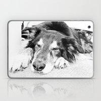 Tired Old Dog Laptop & iPad Skin