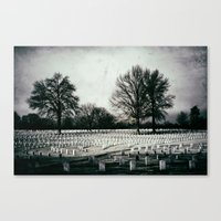 In Honor of Veteran's Day  Canvas Print