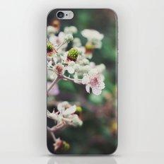 Rubus iPhone & iPod Skin
