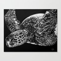 Beneath the Waves the Sea Turtle Swims Canvas Print