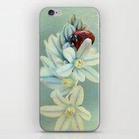 Ladybirds iPhone & iPod Skin